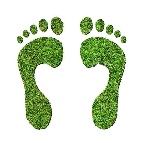 Image of Ecological Footprints - What Are Microfiber Sheets?