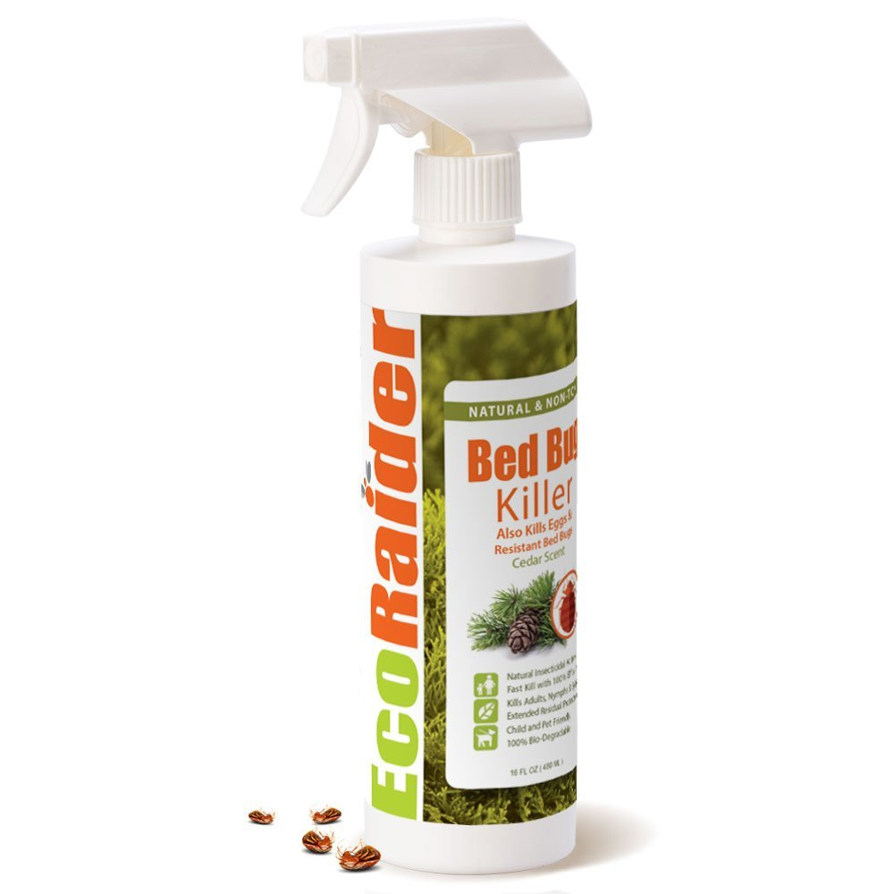 Image of EcoRider's bed bug spray - Best Thing to Kill Bed Bugs